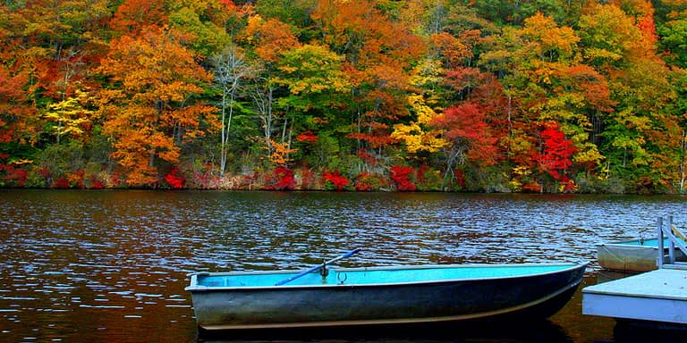 Lake in the fall